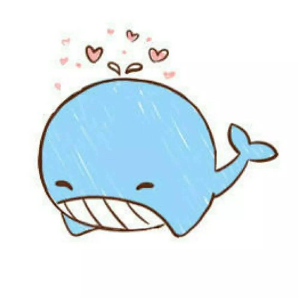 小鲸鱼软糖